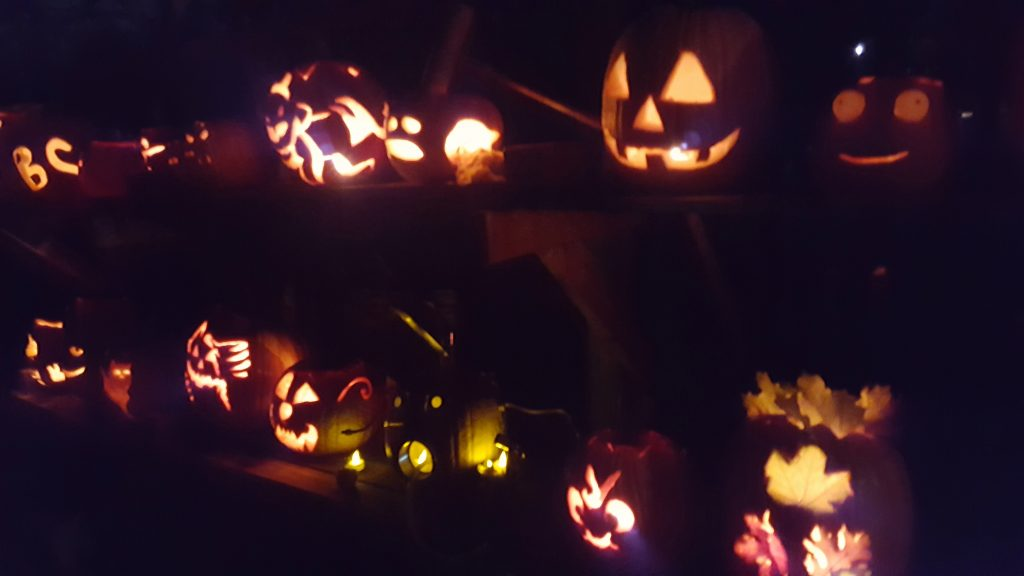 lots of jack-o-laterns